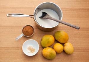 Vegan Mango and Coconut Gelato